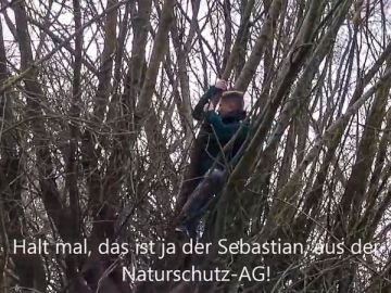 Videos der Naturschutz-AG